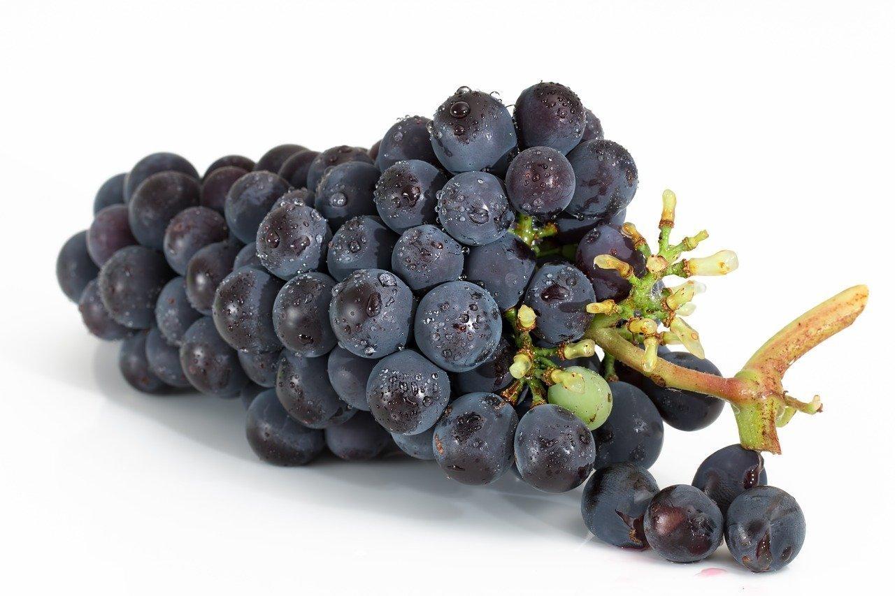 uva-vino-madrepuglia-grappolo