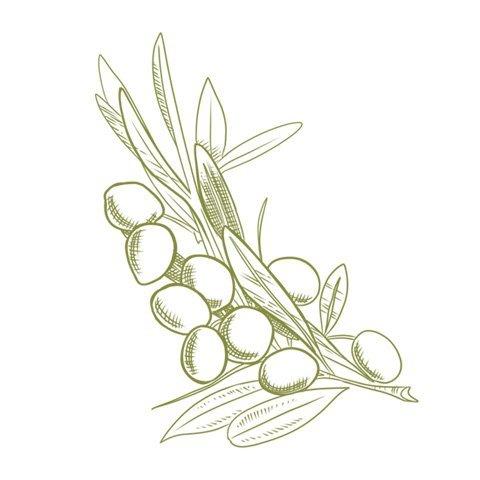 olio-extravergine-di-oliva