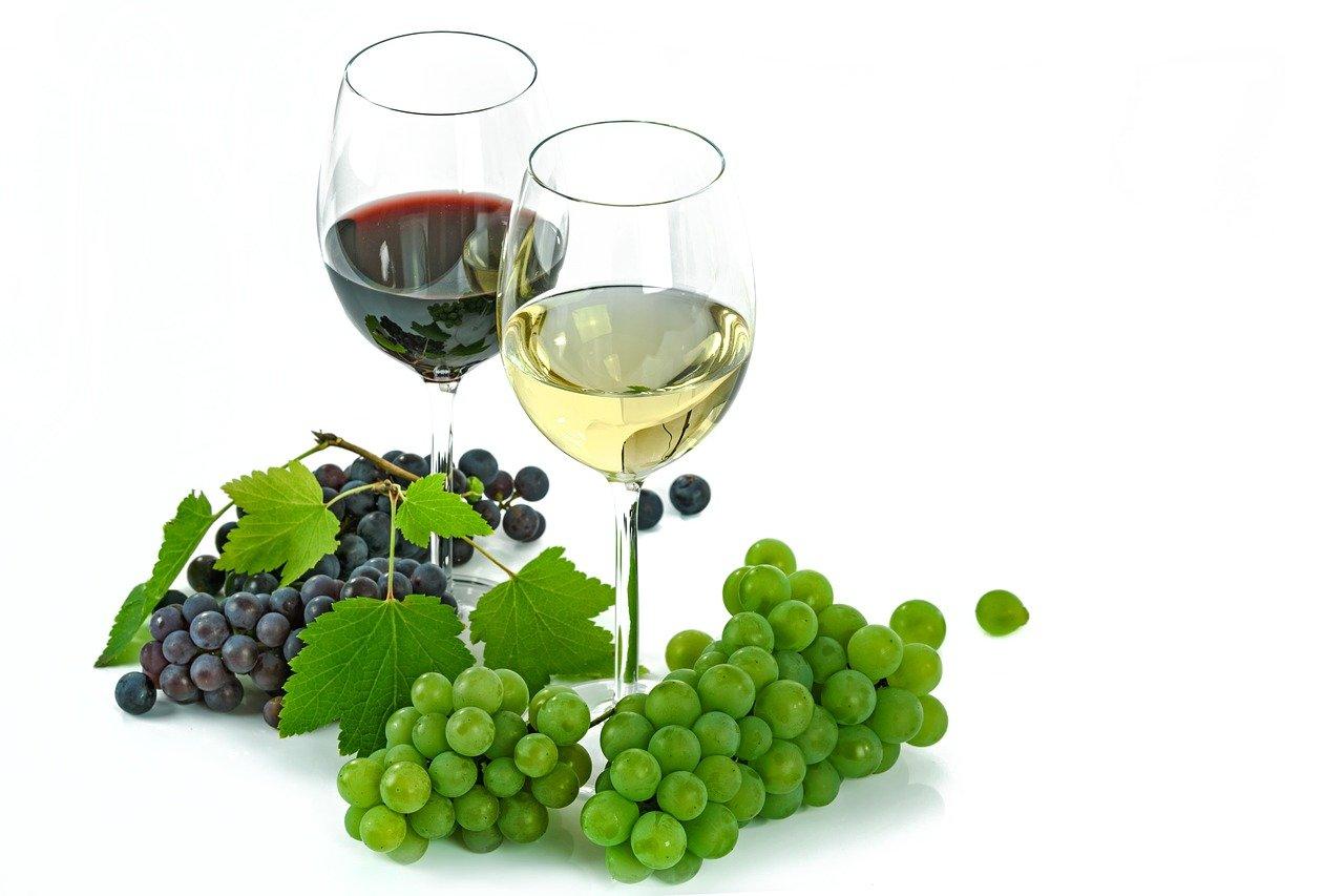 vino-madrepuglia-uva